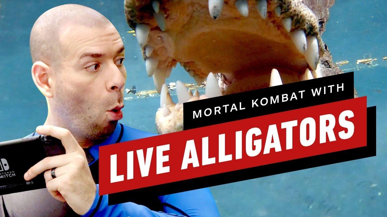 Игровые журналисты решили сыграть вMortal Kombat 11 вкомпании саллигаторами