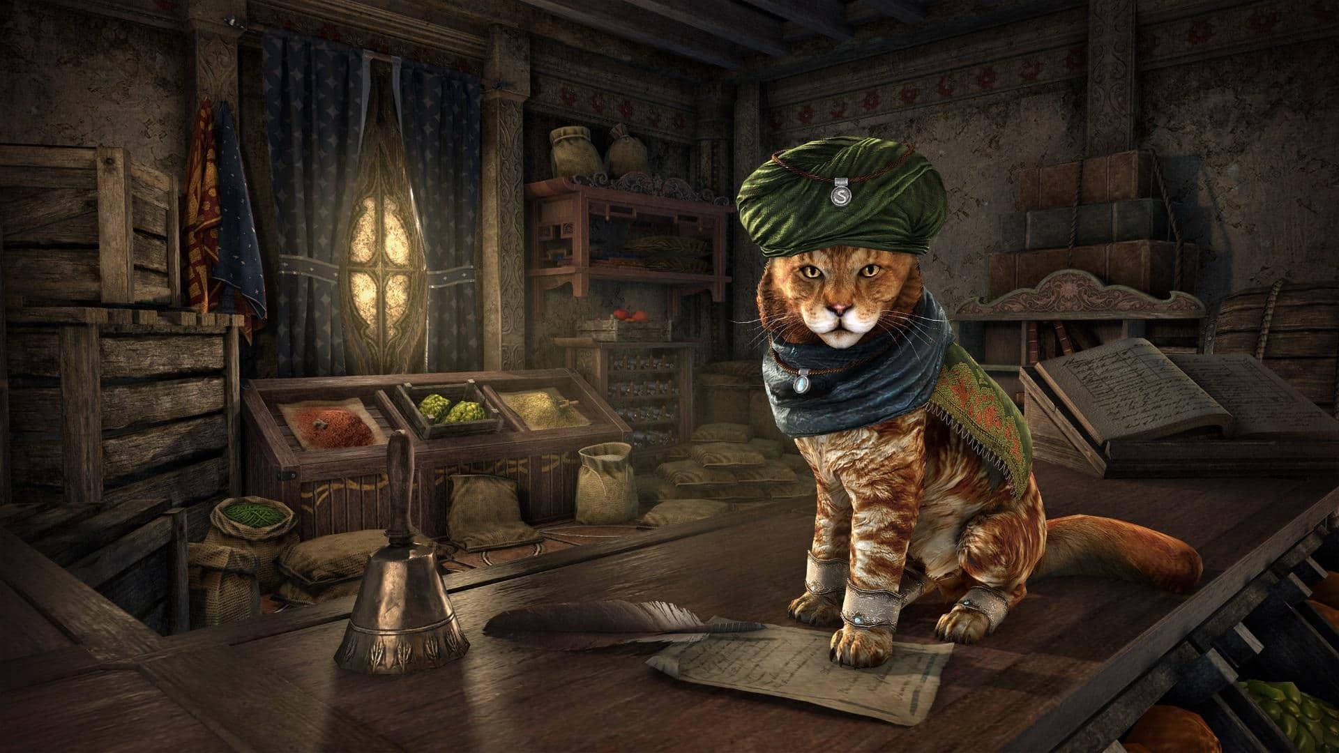 ВSkyrim добавили очень милых котиков